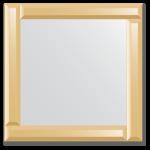 Veidrodžiai su veidrodiniu rėmu