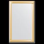 Veidrodžiai su veidrodiniu rėmu 60x100