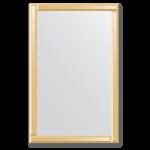Veidrodis su veidrodiniu rėmu 70x110
