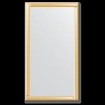 Veidrodis su veidrodiniu rėmu 70x130 cm