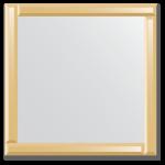 Veidrodis su veidrodiniu rėmu 70x70