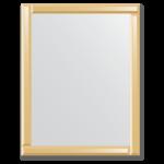 Veidrodis su veidrodiniu rėmu 70x90