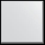 veidrodis 100x100